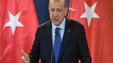 تركيا تدين الرسوم الكاريكاتورية المسئية لـ أردوغان